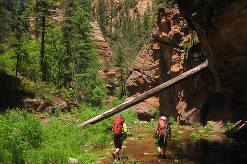 Best Sedona Hikes Where To Hike In Sedona Sedona Hiking Trail